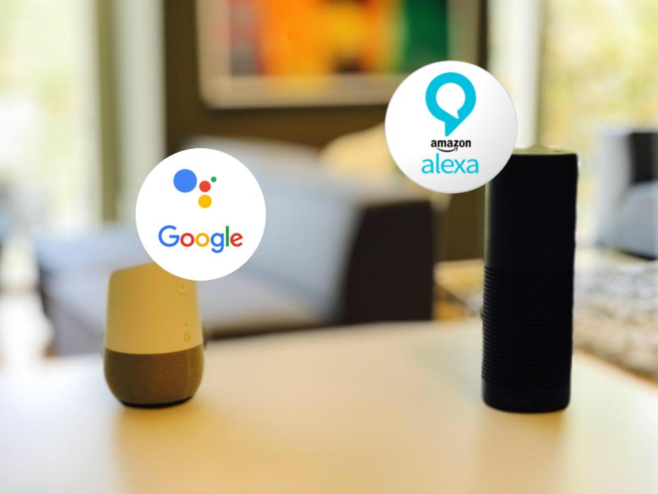 Google Home and Alexa
